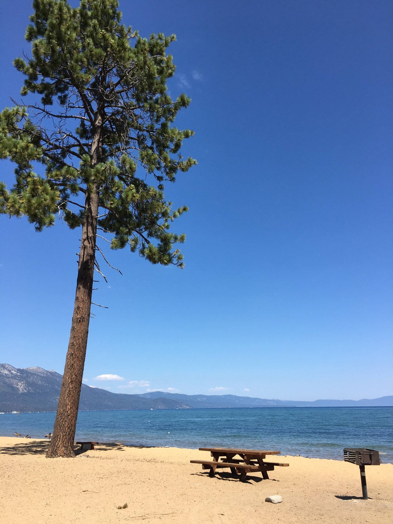 Lake Tahoe – perfect ski resort that still sizzles in the summer!